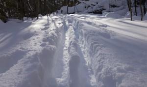 13-jan-06-ski