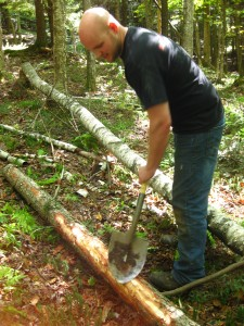 Rock Stars peeling a tree!