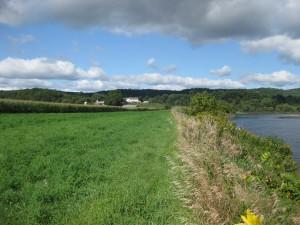 Harkdale Farm
