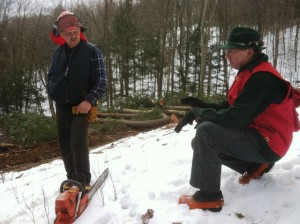 Lawrence Hibbard and Ehrhard Frost on Ehrhard's UVLT-conserved Frost Forest in Thetford.
