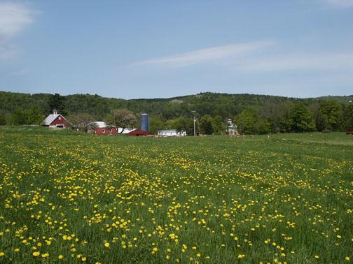 farm_web