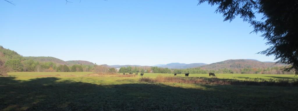 LaMountain Farm, Thetford – view across conserved farmland in 2013.