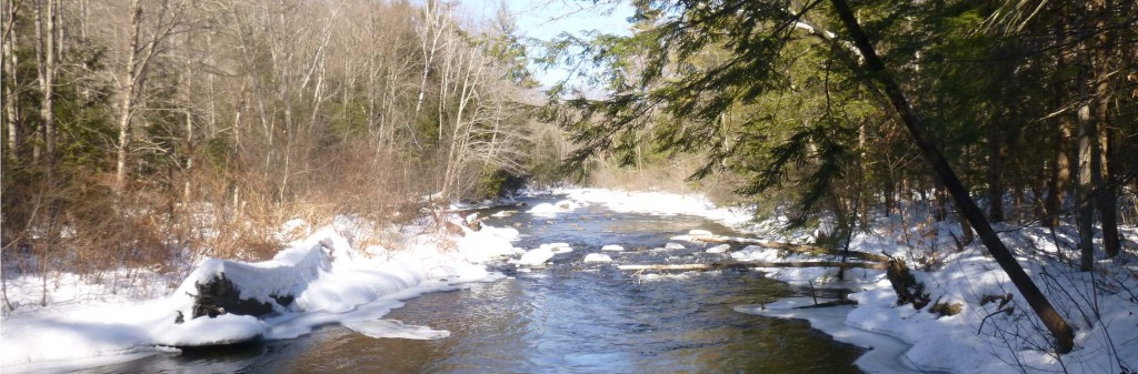Mascoma River from UVLT's Mill Road Floodplain Preserve in Lebanon.