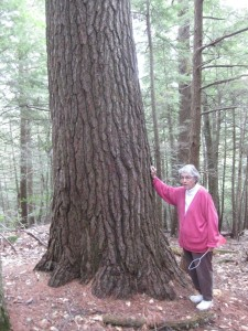 Owner Carol Quimby Heath standing with The Great Pine.