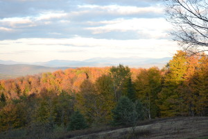 Sunset views from our foliage hike at Galusha Hill, Topsham. This 545-acre property was conserved in 1999.