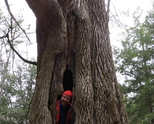 Jason Berard in giant ash