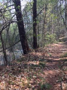 brook&trail