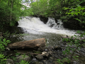 23 Cascade by old mill site on Clay Brook