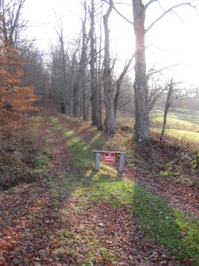 The property contains trails used by hikers and horseback riders. Vehicles are not permitted on the trails.
