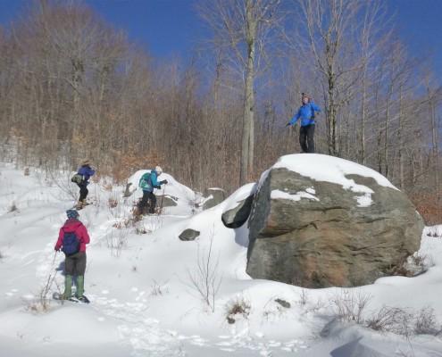 snowmountainonrockssmall
