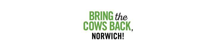 bring cows