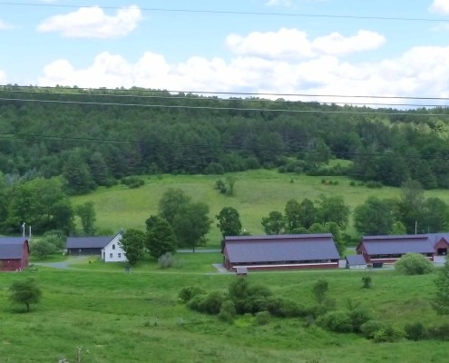 View of barns for press release cropped