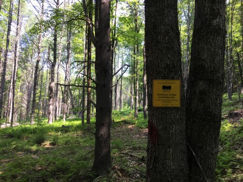 2018 Up on the Hill Boundary Signs (DB) (6)
