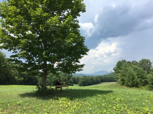 7.27.18 up on the hill (DB) (2)